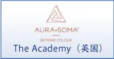 The Academy(英国)