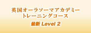 英国オーラソーマアカデミー トレーニングコース 最新 Level 2