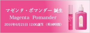 マゼンタ・ポマンダー誕生 Magenta  Pomander 2016年6月21日、12:00誕生(英国時間))